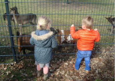 herten kinderopvang more for kids nijverdal jojanneke beukenkamp